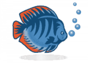 Aquamagaz.ru